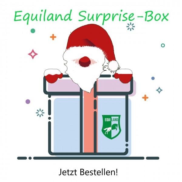 Überraschungsbox für Pferd & Reiter ❄️WINTER-EDITION❄️